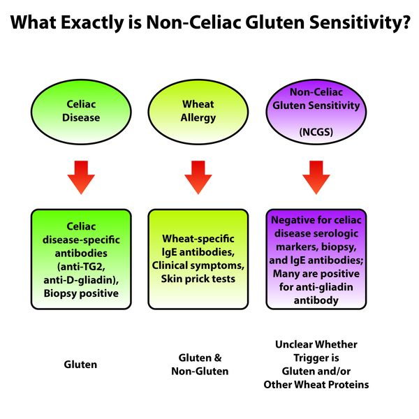 Non Celiac Gluten Sensitivity