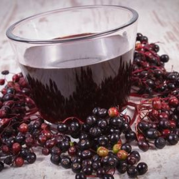 fresh-elderberry