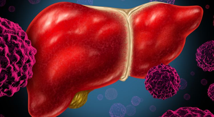 Image of human liver and pathogen particles attacking it