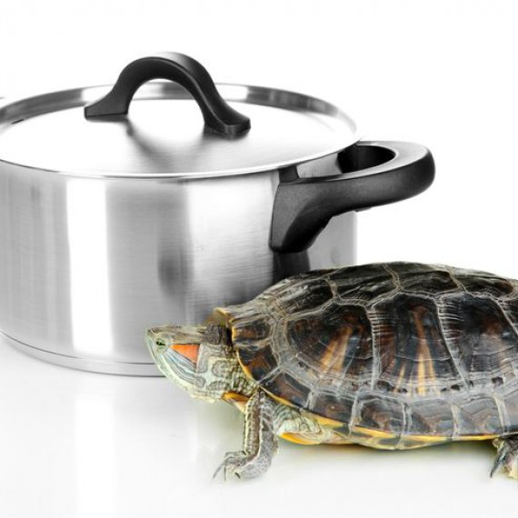 slow-cooking