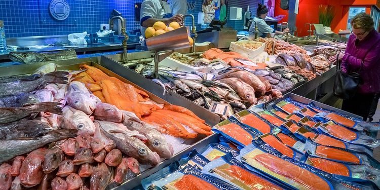 Photo of fish at fish market