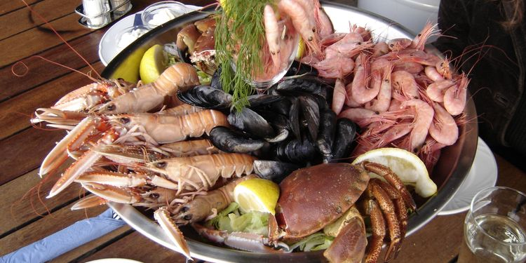 Photo of dish with different sea food stuff