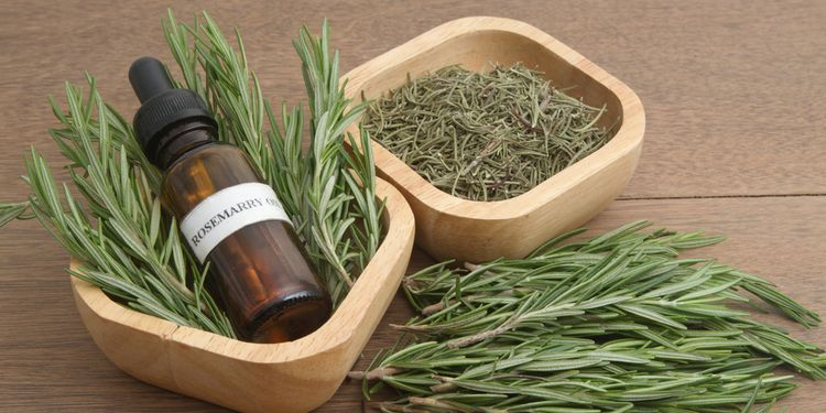 Photo of rosemary oil and leaves in a cup