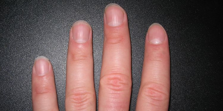 Photo of female hand spreading fingers showing nails