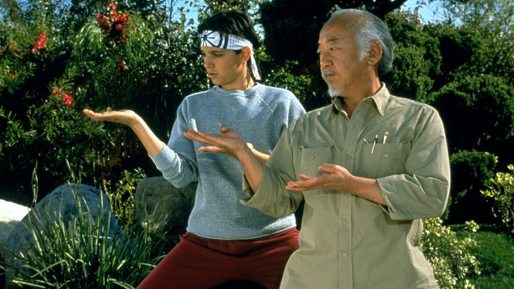 The Karate Kid Lessons