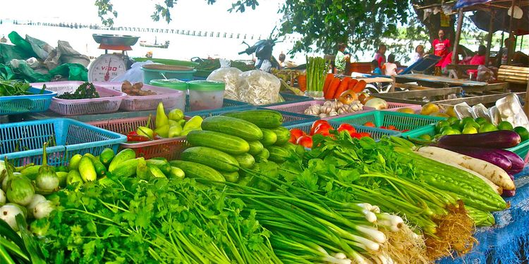 Photo of vegetables at a local organic market