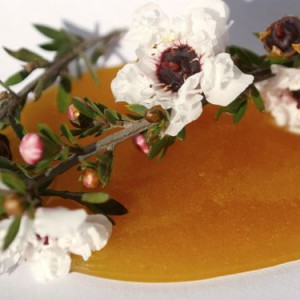 Photo of manuka honey spilled on table and covered with blooming manuka branch
