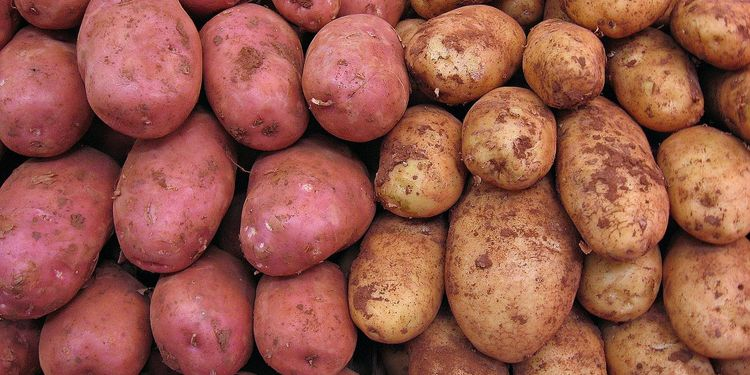 Close up photo of potatoes stacked in market