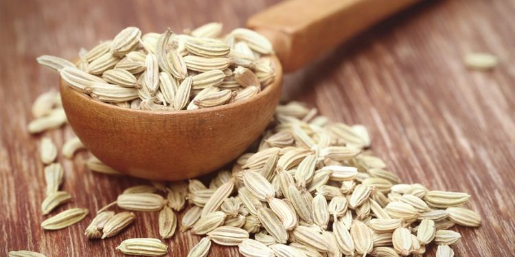 Image of FENNEL SEEDS, food that makes you more desirable