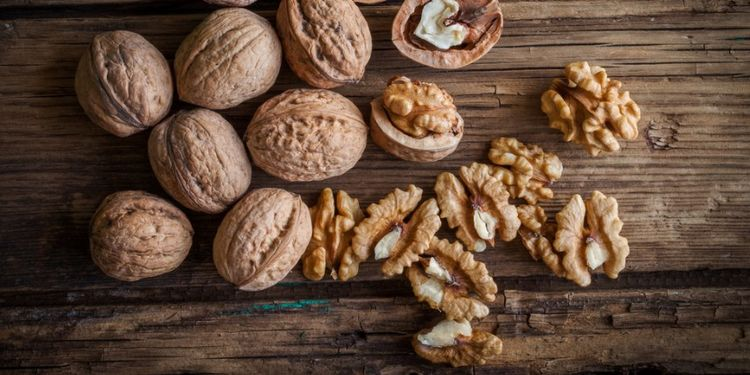 Image of WALNUTS, food that makes you more desirable