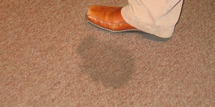 Photo of stain on a carpet