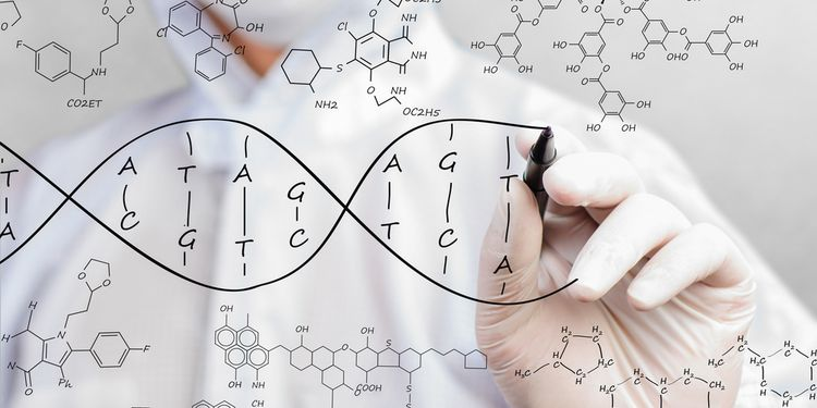 Scientist sketching DNA structure
