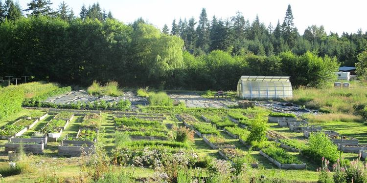 Photo of Innisfree farm garden with herbs