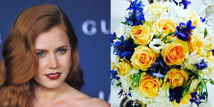 Image of Amy Adams who suffers from allergy