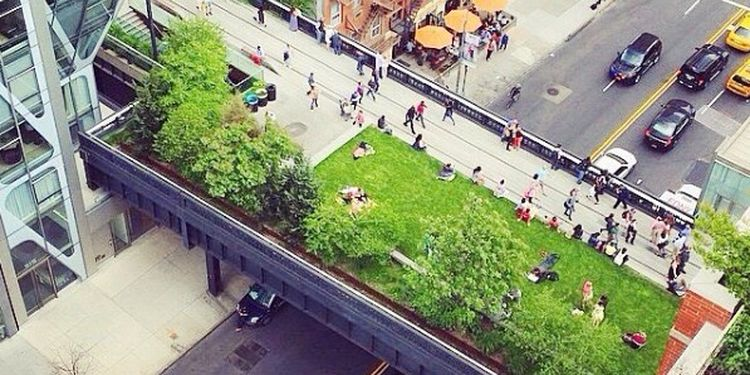 Image of High Line Park