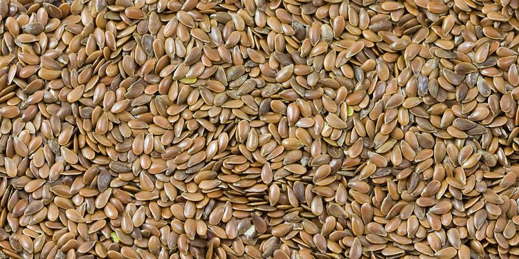 Photo of flax seed