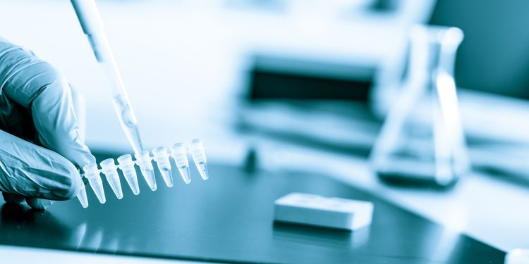 Photo of lab technician holding PCR test tubes