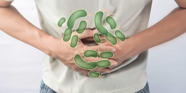 Illustration of pain gut caused by bacteria