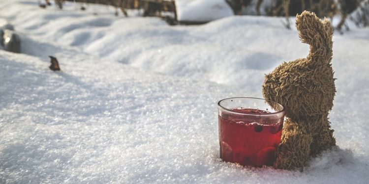 Image of a toy rabbit with a glass of cranberry juice