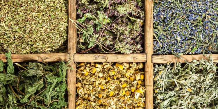 Photo of Assorted natural medical dried herbs