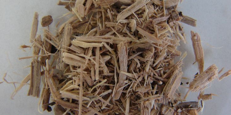 Photo of Siberian Ginseng Root