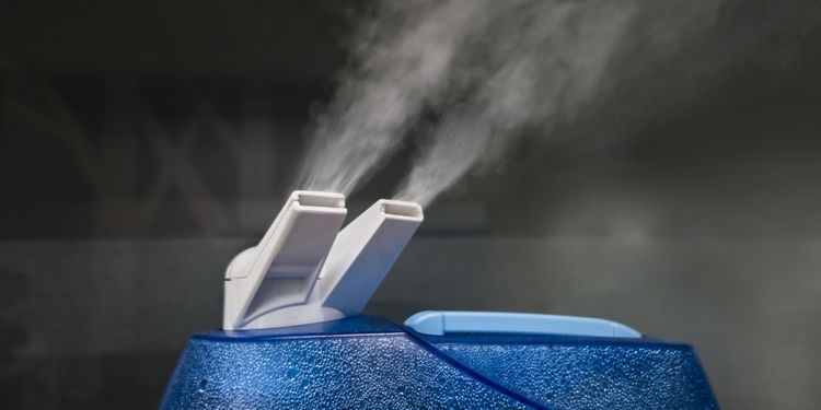 Is a Humidifier Good or Bad for You?