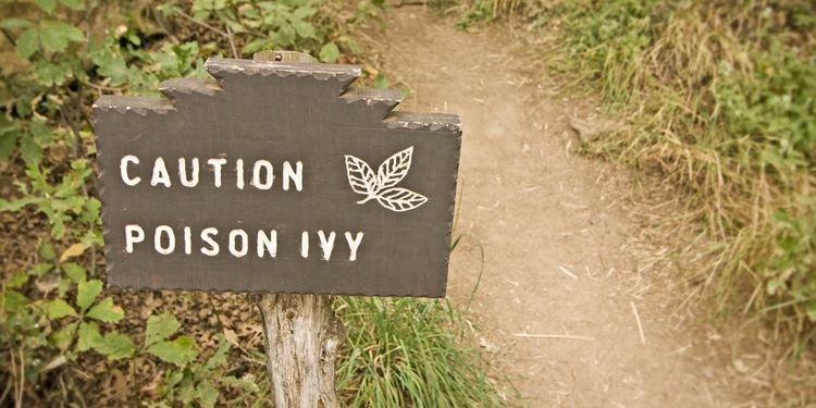 Photo of poison ivy caution sign