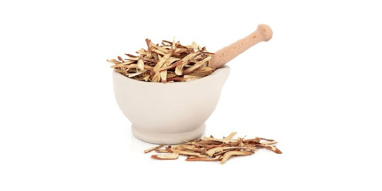 Photo of a licorice root that  Has Memory Enhancing Abilities