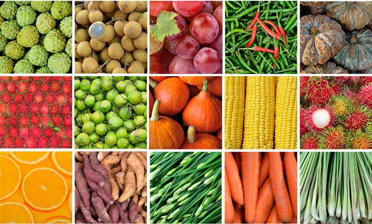 Collage of raw foods