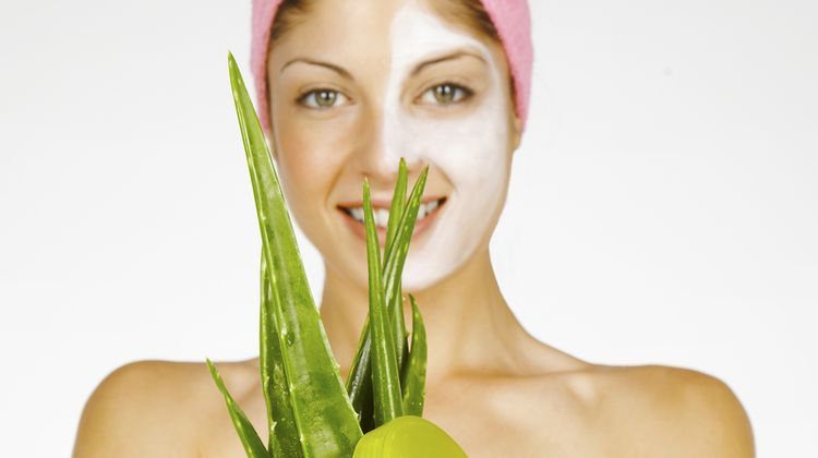 Photo of a woman holding a plant of Aloe Vera